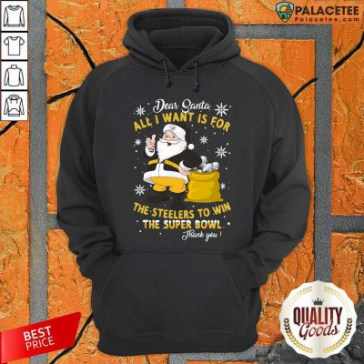 Dear Santa All I Want Is For The Steelers To Win The Super Bowl Thank You Hoodie-Design By Palacetee.com